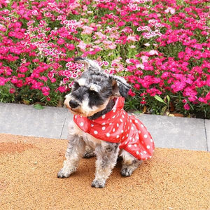 Polka Dotted Rain Coat Jacket | Dog Apparel