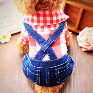 Plaid and Overalls
