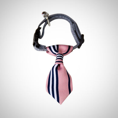Adjustable Bow Knot Collar Tie