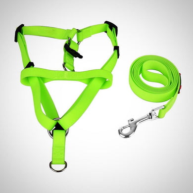 Silicone Harness & Leash Set
