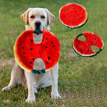 Load image into Gallery viewer, Watermelon Frisbee