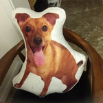 3D Portrait Custom Pet Pillow | Face Pillow