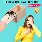 Scary Spider Prank Box™