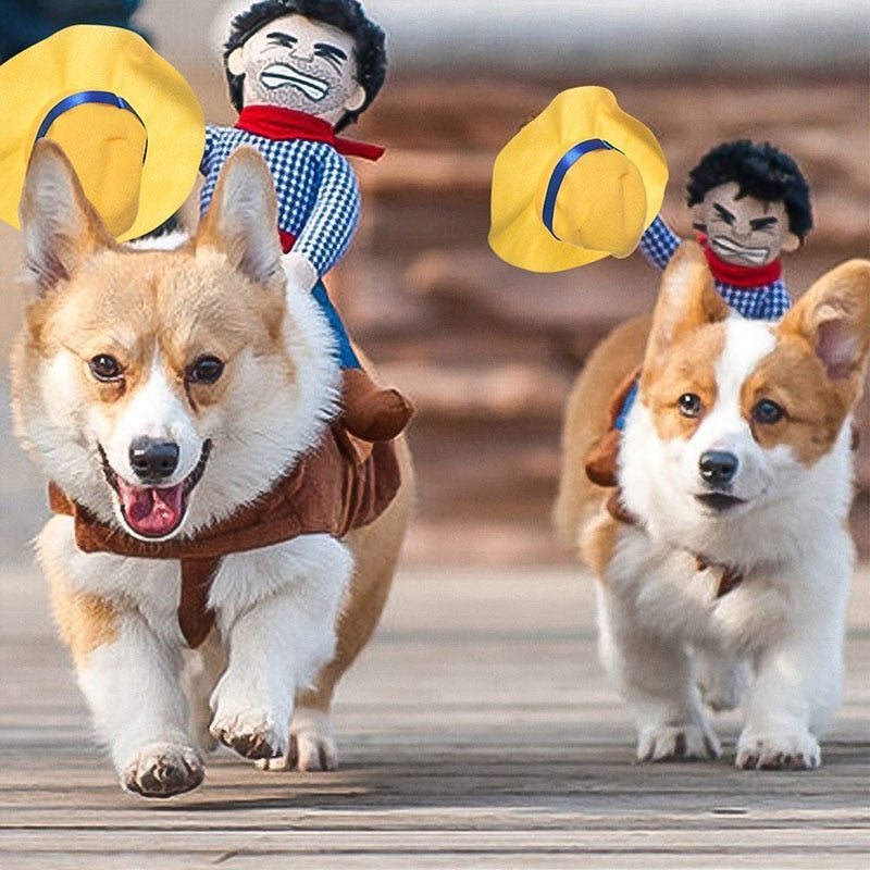 Funny Pet Cat Dog Costumes Dog Apparel Clothes For Halloween Cosplay Western Cowboy Riding Costumes Jacket Cloak Dog Accessories