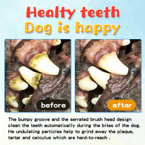 Dog Tooth Cleaning & Chewing Brush