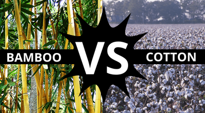 Is it time to make the change : Bamboo vs Cotton