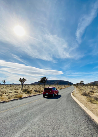 Driving through Joshua Tree National Park in mid-day