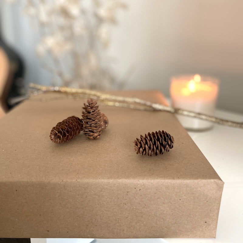 Winter Box, Winter 2020 edition subscription box, best stationery subscription box in Canada