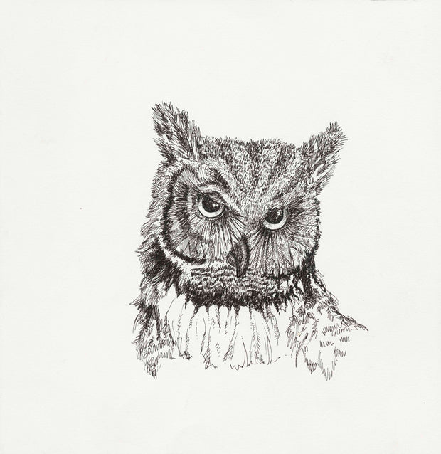 OWL FROM THE WOODS PRINT - Limited Edition, 150 ct 12x12