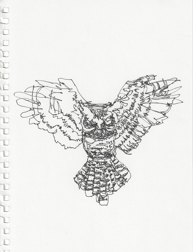 OWL IN FLIGHT - 8.25x12