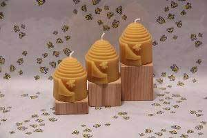 This Earth Day think of the Honey Bees!