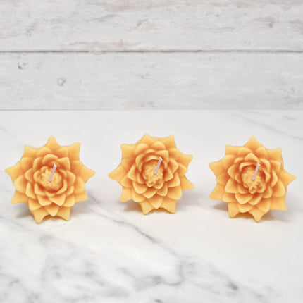 Floating Lotus Blossoms Natural Beeswax Candles