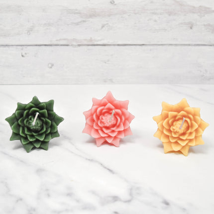 Floating Lotus Blossoms Hopeful Beeswax Candles