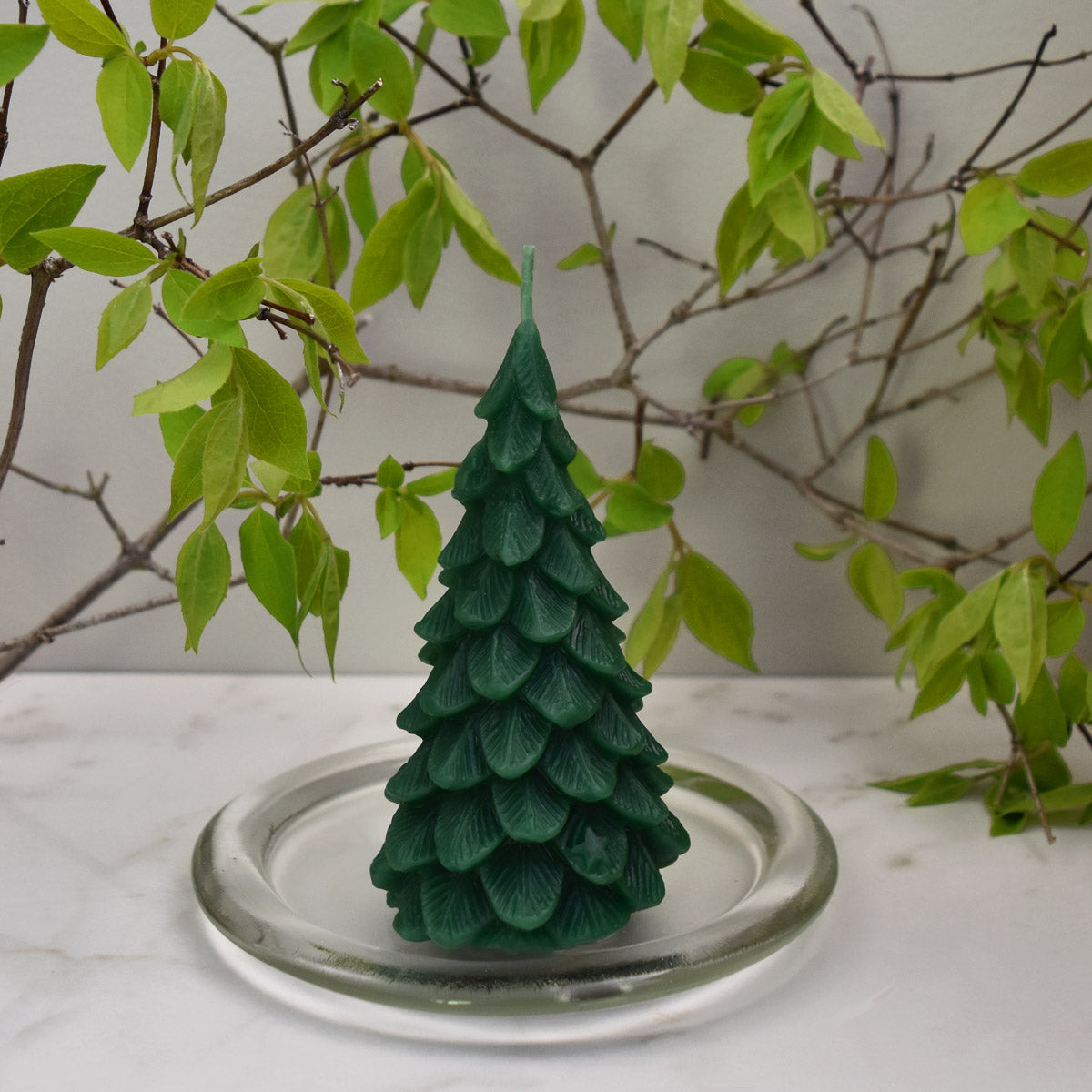 Green beeswax ornamental tree on glass plate