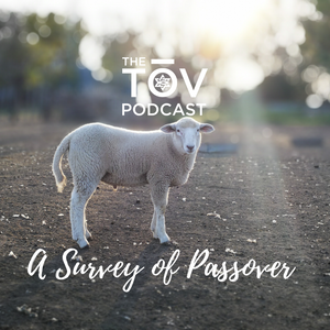 A Survey of Passover
