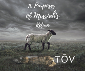 10 Purposes for Messiah's Return