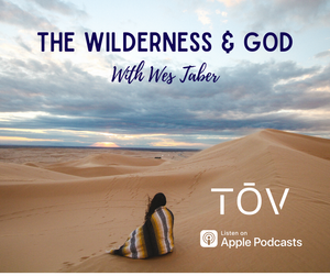 You, the Wilderness & God