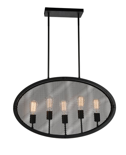 5 Light Up Pendant with Black finish