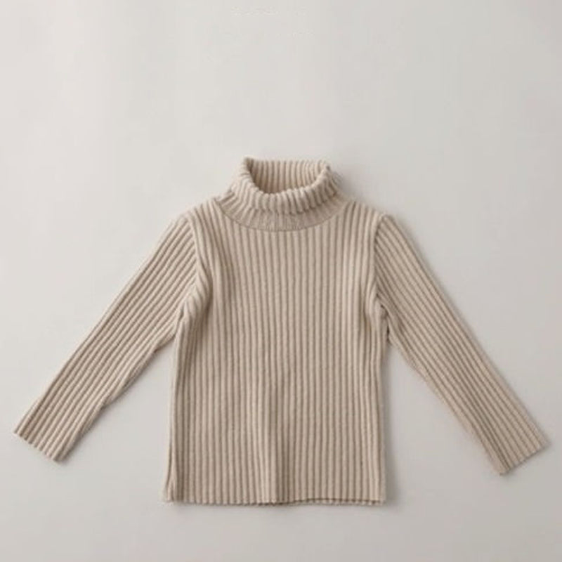 Rae Rib Brushed Turtleneck (Charcoal)