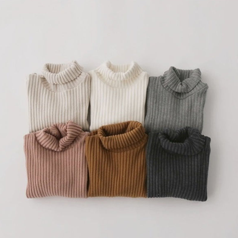 Rae Rib Brushed Turtleneck (Grey)