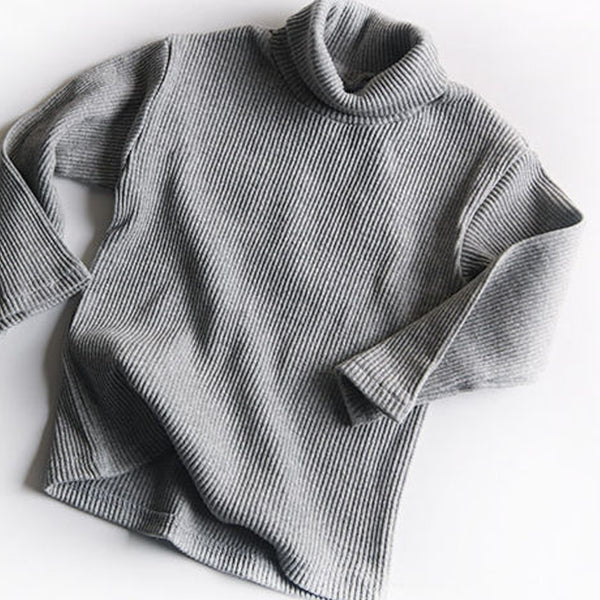Roma Ribbed Turtleneck Basics (Grey)