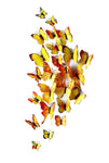 12PSC Vivid Butterfly Wall Stickers Art Decal Yellow, Magnet + Blu Tack