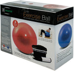 Exercise Ball with Pump Set