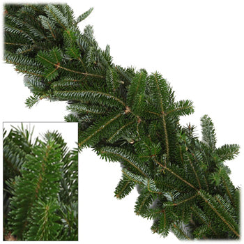 Fraser Fir - 25ft Christmas Garland