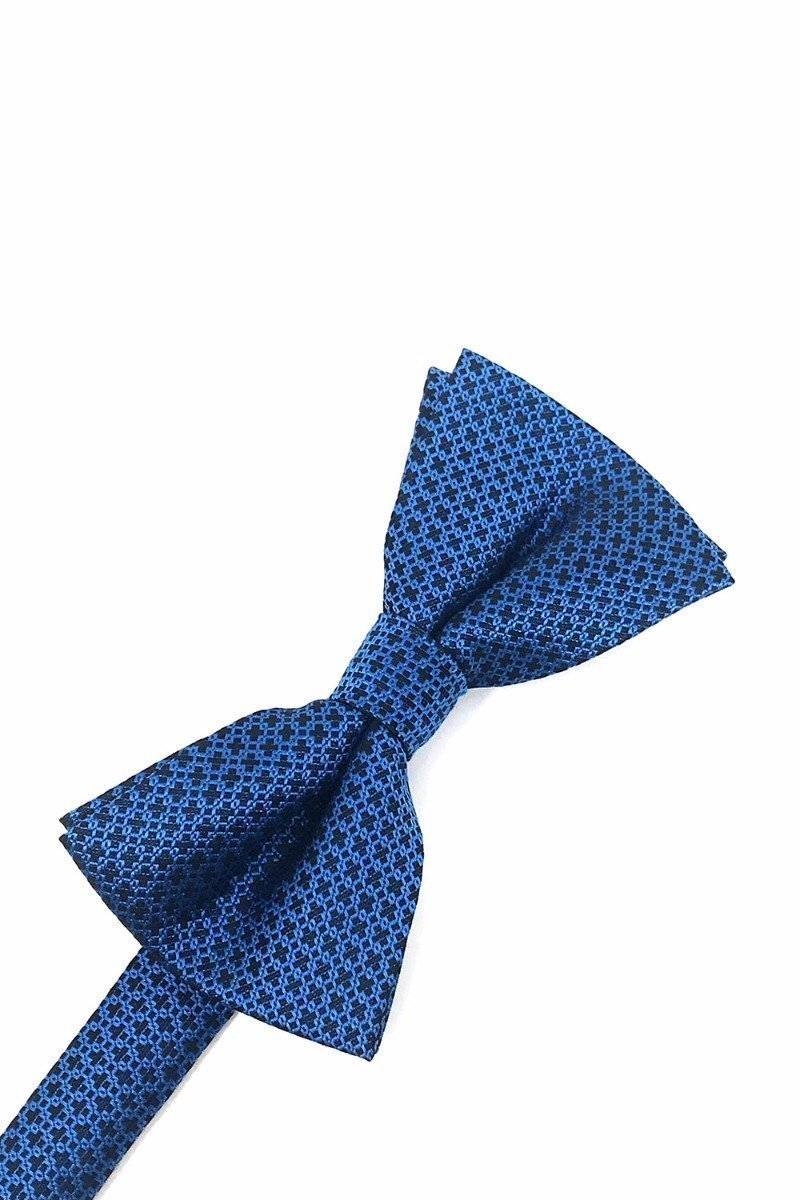 Blue Regal Bow Tie
