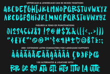 Load image into Gallery viewer, Raisin Rage: a fun casual font with variety!