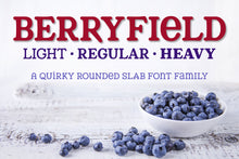 Load image into Gallery viewer, Berryfield: a quirky rounded slab font family!