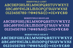 Berryfield: a quirky rounded slab font family!