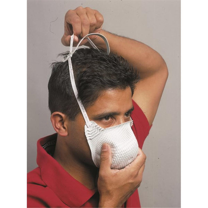 Moldex EZ-ON N95 Respirator