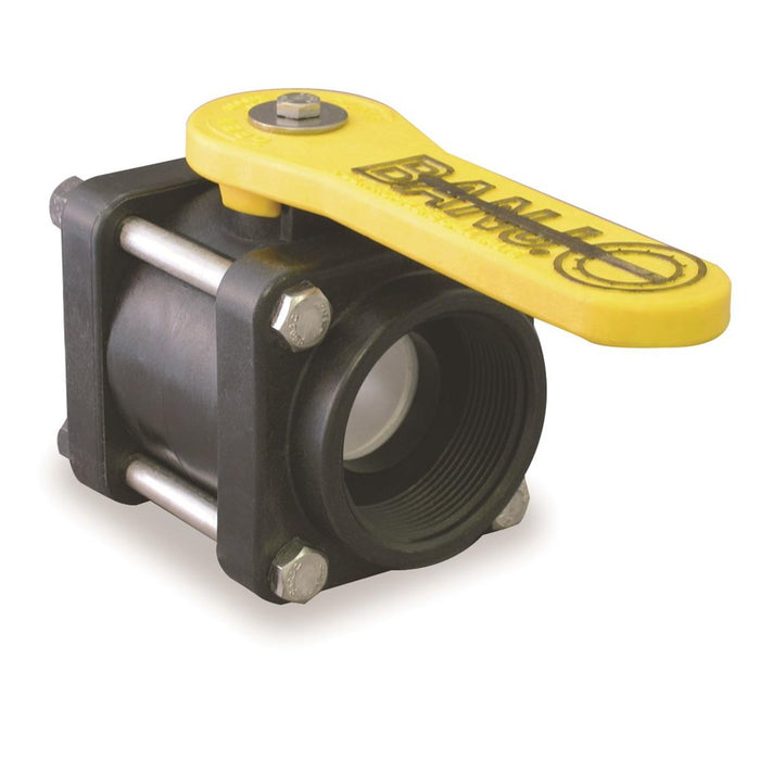 Banjo® 4-Bolt Poly Ball Valves