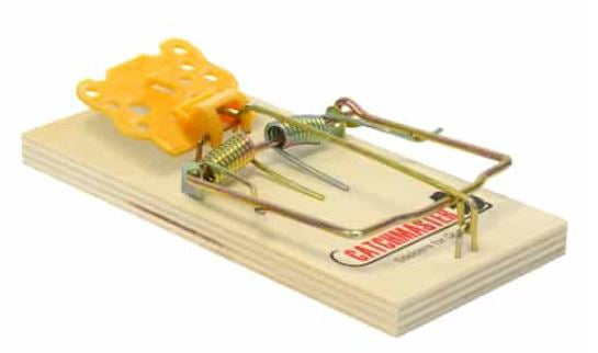 Snap Mouse Trap, Pkg. of 2