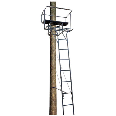 Big Dog Big Bud 18' Two Man Ladder Stand