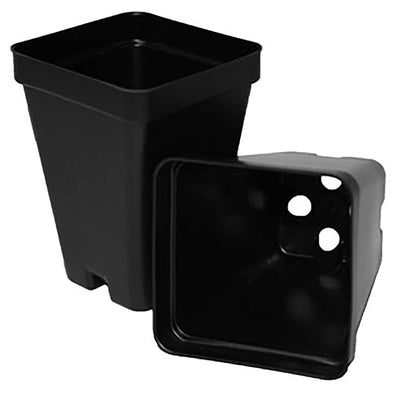"T.O. Plastics 2.5"" Deep Pot"