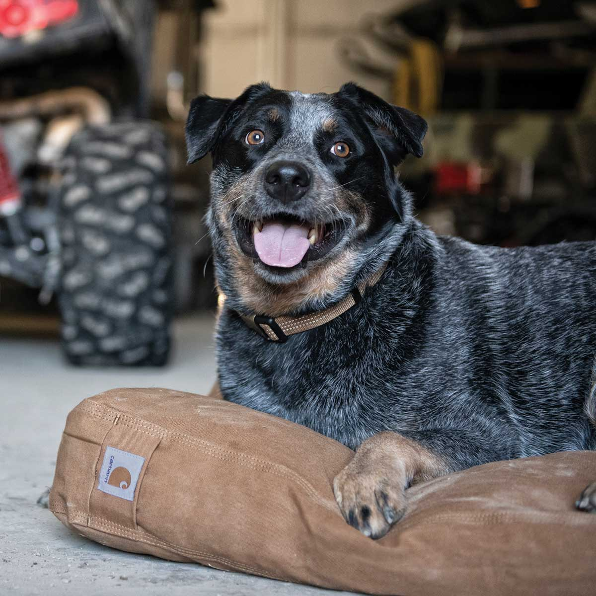 Carhartt Medium Pet Bed