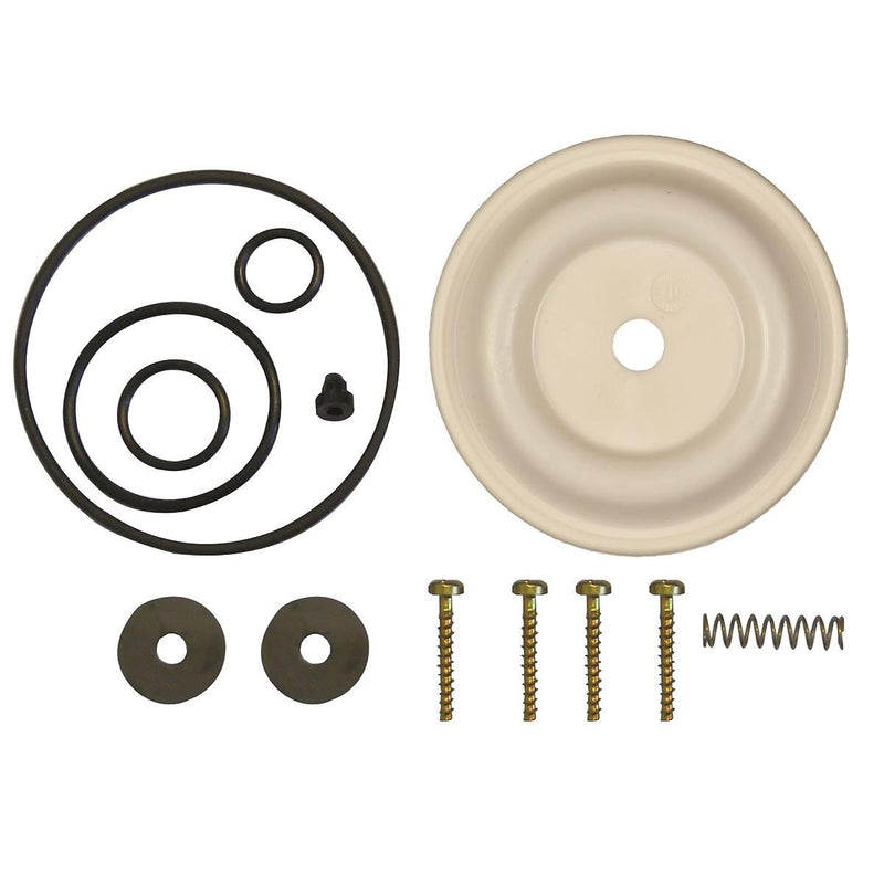 Solo® Diaphragm Pump Repair Kit