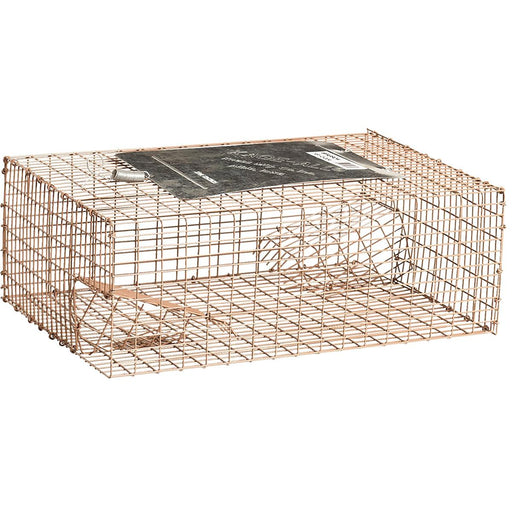 KNESS Commercial-Grade Live Trap for Sparrows