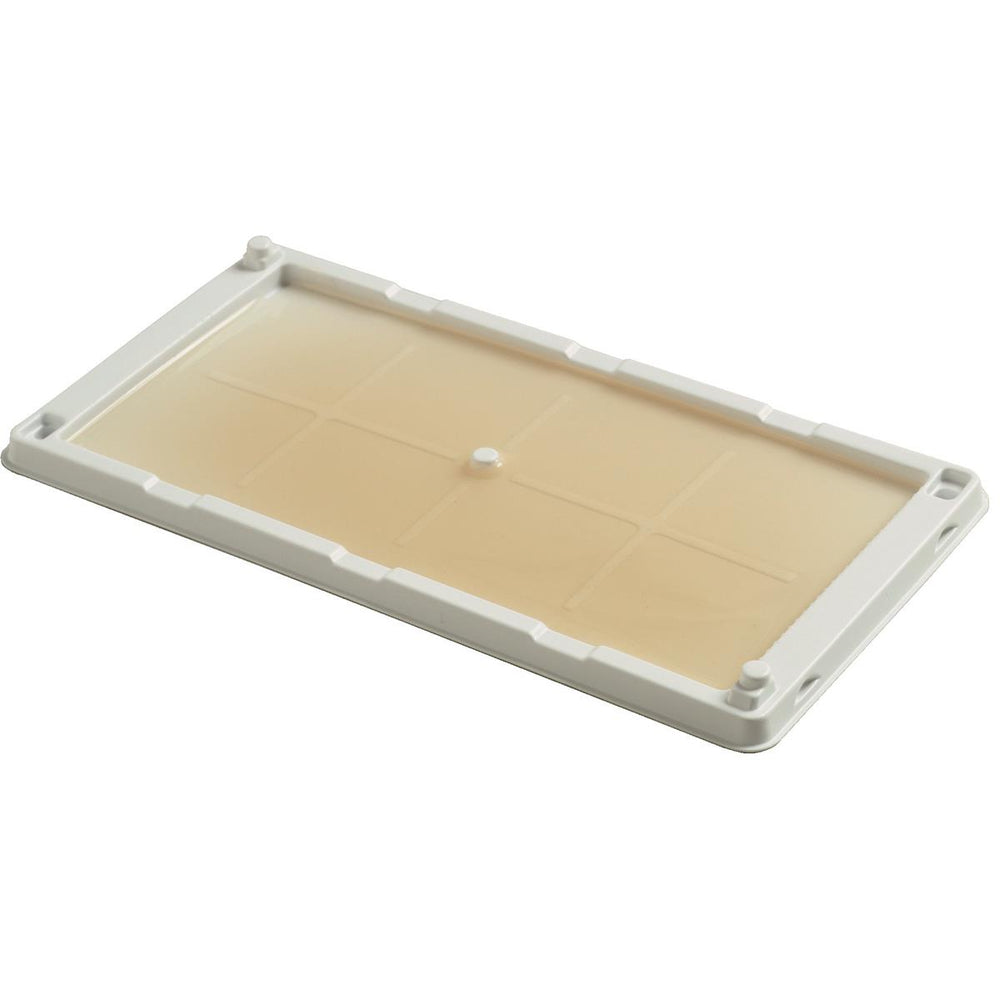 Cold Temperature Mouse Glue Tray, Pkg. of 2