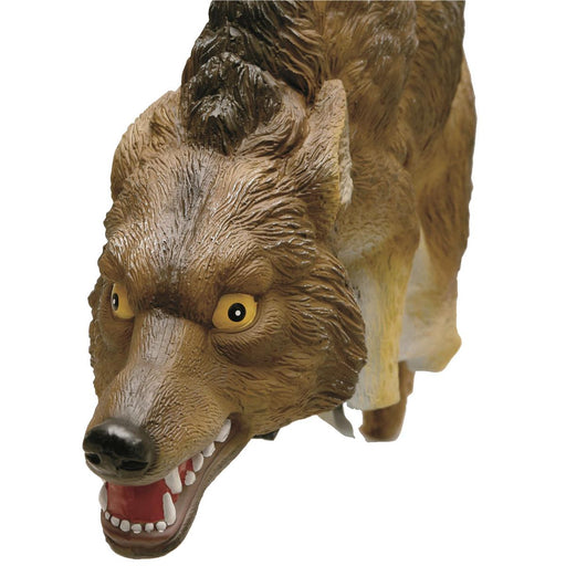3-D Predator Coyote Decoy
