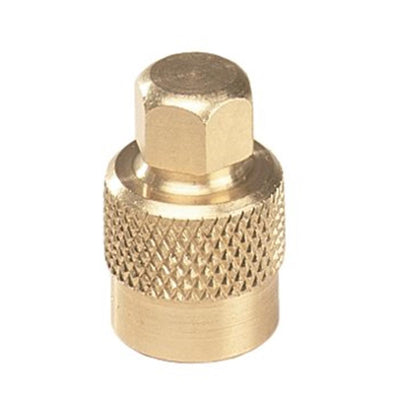 Large Bore Hex Valve Cap