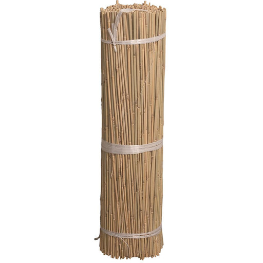 Bond First-Cut Bamboo Stakes