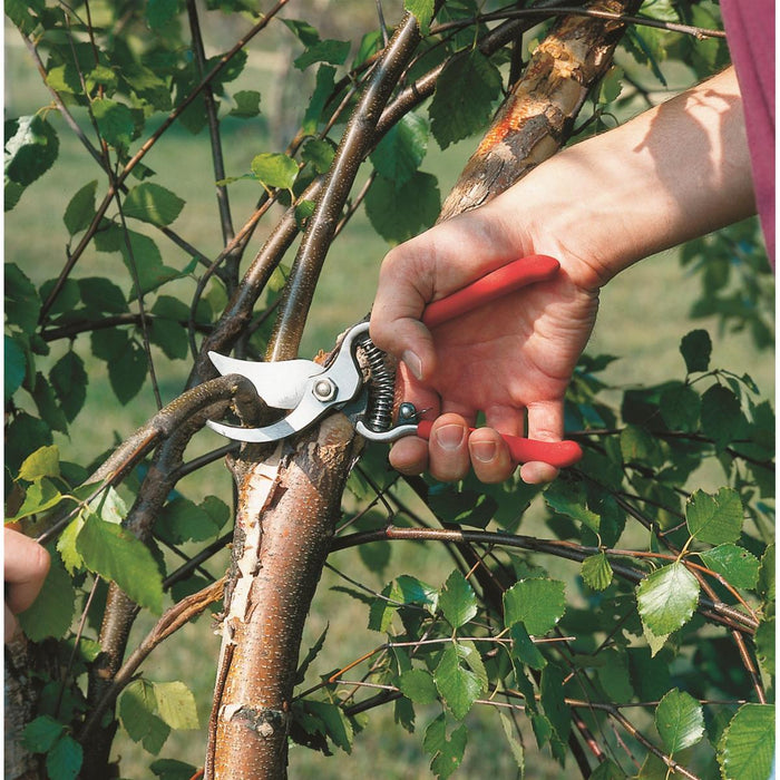 Economical Bypass Pruner with Nylon Holster