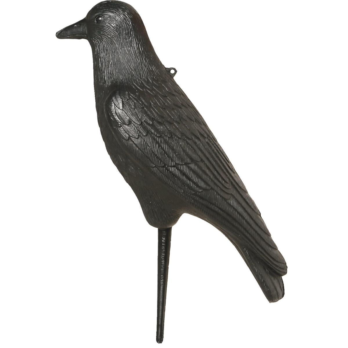 Hard-Bodied Crow Decoy