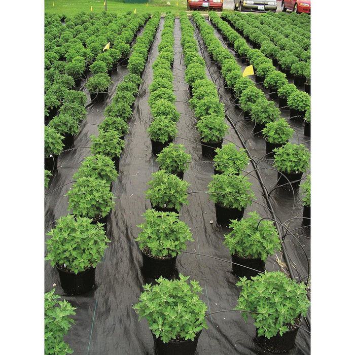 Ultra Web 3000 Ground Cover Roll, 4'W x 600'L