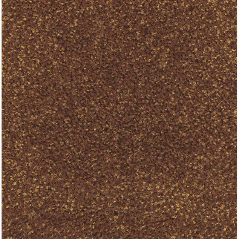 M + A Economical Indoor Carpet Mat