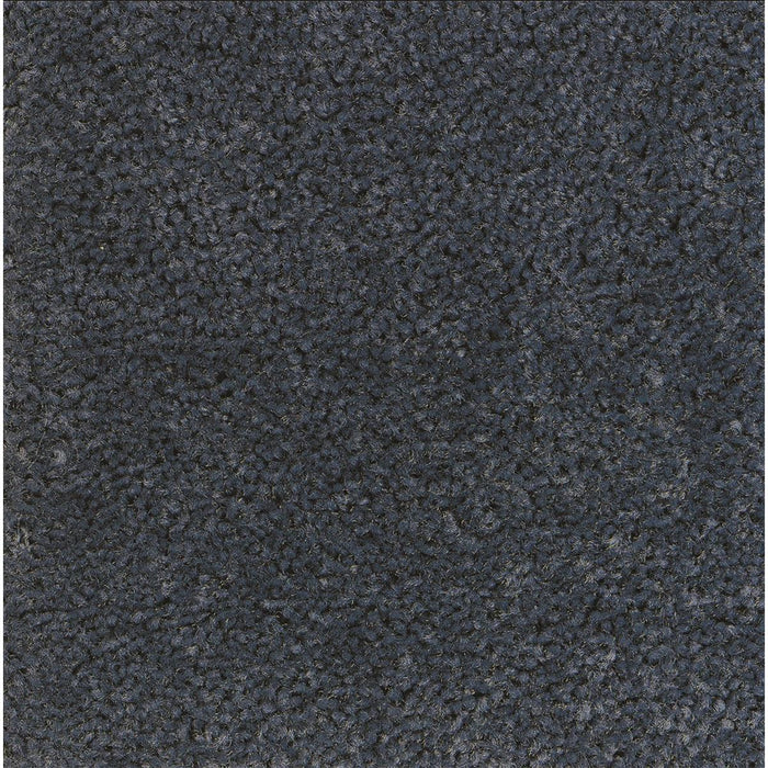 ANDERSEN Economical Indoor Carpet Mat