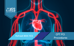 CPT PCI Procedures | Ceus Included